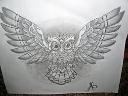 collection of 25 open wings king owl on chest