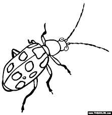 online coloring page insect online coloring pages page 1
