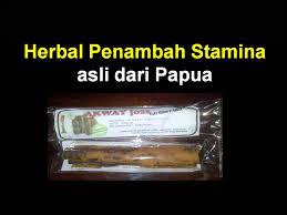 obat kuat herbal kayu akway papua youtube