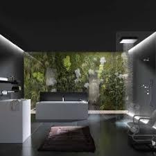 Nature Concept In Interior Design Bathroom Minimalist Design In Black U0026 White But With Additional