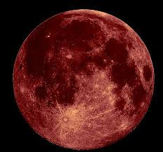 what is a strawberry moon strawberry moon fairy alert werewolf warning paranormal activity