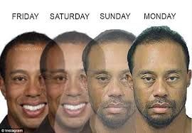 Tiger Woods Memes - best of tiger woods dui memes the weekend golfer