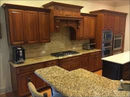 Painting Old Kitchen Cabinets White by Kitchen Cabinet Painting Ideas Refinishing Oak Kitchen Cabinets