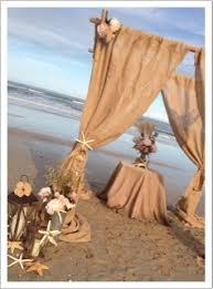 Bamboo Wedding Arch Wedding Arch Rentals New Smyrna Beach Florist Pink Flamingo At