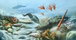 paleozoic era facts u0026 information
