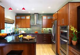 kitchen asian contemporary kitchen cabinets 2 of 10 photos