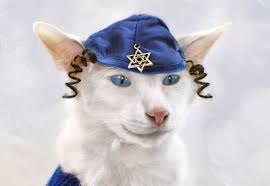 chanukah hat hanukkah archives mousebreath magazine mousebreath magazine