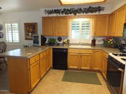 inexpensive kitchen ideas fascinating kitchen cabinet refacing ideas affordable in cabinets