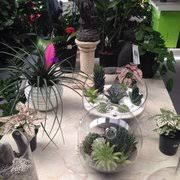 Kings Plant Barn Remuera Kings Plant Barn Gardening Centres 118 Asquith Ave Mt Albert