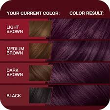 vidal sassoon pro series hair color 3vr deep velvet violet