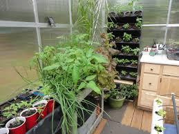 alpha hydroponics u0026 garden supply inc