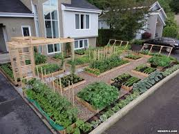 image result for amazing front yard victory garden edible