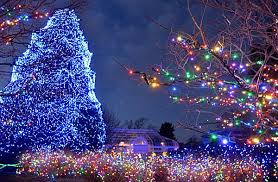 most popular christmas tree lights the 10 most amazing christmas trees in the u s