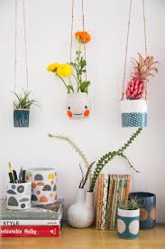 50 best house plants images on pinterest house plants hanging