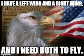 America Eagle Meme - american eagle imgflip