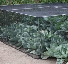 Vegetable Garden Netting Frame by Harrod Slot U0026 Lock Aluminium Vegetable Cage 1 2m H Harrod