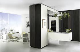 Kitchen Designs Sydney Home Kitchen Biz Kitchen Renovations Sydney