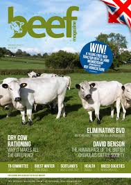 Hansen Agri Placement Jobs National Beef Association Magazine By Kinroydesign Issuu