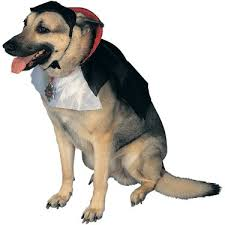 big costumes costumes for large dogs 3xl 4xl