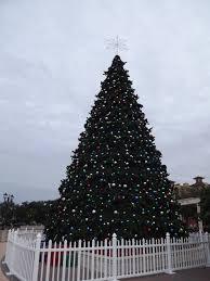 a disney in orlando a florida christmas