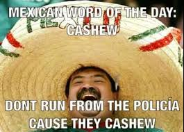 Mexican Meme Jokes - 47 best funny jokes images on pinterest mexican words jokes and