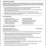 It Security Analyst Resume Sample by Information Security Analyst Resume Proposal Bid Template