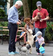Where Do Bill And Hillary Clinton Live Bill Clinton Walks Dogs Around Madison Square Park While Hillary