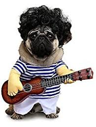 Dog Costumes Halloween Amazon Costumes Apparel U0026 Accessories Pet Supplies
