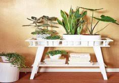 best 25 plant decor ideas on pinterest house plants indoor plant decoration ideas best 25 indoor plant decor ideas on