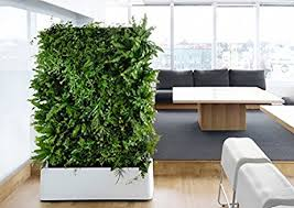 amazon com indoor waterproof 12 pocket vertical living green wall