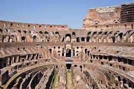 best way to see the colosseum rome cats who prowl the ancient monuments of rome