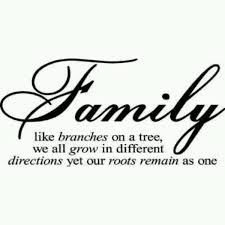 family is like branches on a tree quote amo