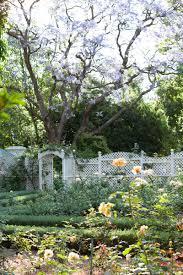 how to plan a rose garden sa garden and home