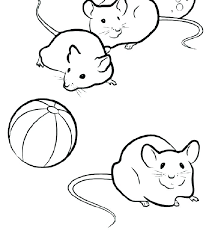 coloring page of a rat rat coloring page tenaciouscomics com