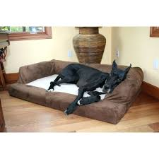 Kmart Sofa Covers by Large Luxury Dog Beds Sling Dog Bed Red Dog Beds Kmart Memory Foam