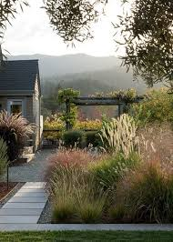 landscaping with ornamental grasses the happy housie