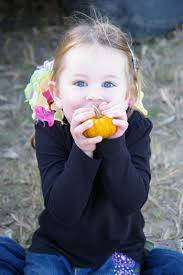 Hayden Pumpkin Patch Hours by Going Toblogganing