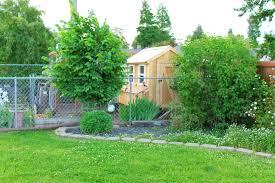 garden before u0026 after new chicken coop u0026 garden layout eryn whalen