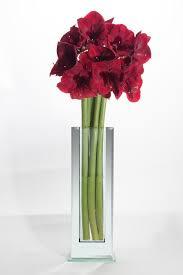Flowers Glass Vase Amazon Com Flower Glass Vase Decorative Centerpiece For Home Or