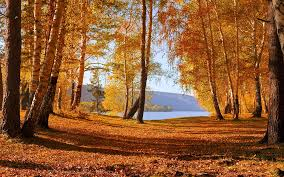 autumn lake wallpaper autumn nature 59 wallpapers wallpapers fall lake pictures wallpaper 1920 1200