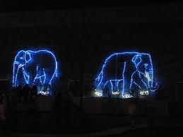 Washington Dc Zoo Lights by Candyce H Stapen Familyitrips Twitter