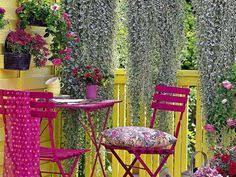 blumen fã r balkon sichtschutz für balkon holz hohe geländer blumen blühende bäume