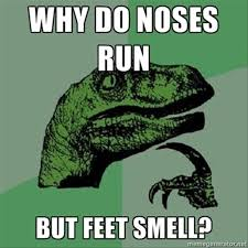 One Line Memes - why do noses run but feet smell funny one liners dump a day