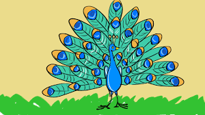 how to draw peacock drawing and coloring step by step узнать