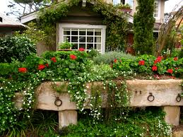 Cottage Garden Ideas Pinterest by Cottage Garden Raised Beds Garden U0026 Outside Ideas Pinterest