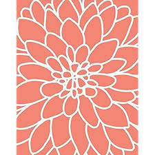 coral color coral color decoration amazon com