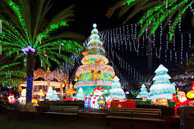 christmas lights where to see the best christmas light displays in san diego