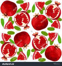 pomegranate ornament stock vector 405627319