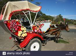 Image Flower Garden by Floral Horse And Carriage Dalat Flower Garden Stock Photo