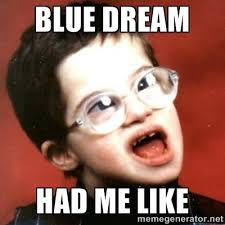 I Had A Dream Meme - blue dream strain guide honest marijuana